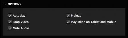 Set video options