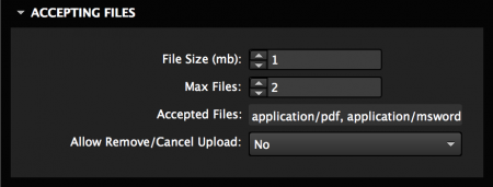 Set file options