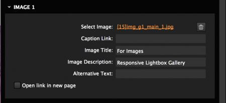 Set image link, caption, description, alternative text